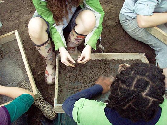 Archéologie : Foulles archéologiques