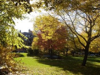 octobre au Québec Mont-Royal