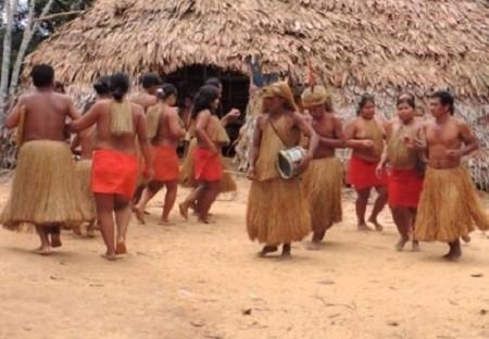 Pour faire franchir les rivières aux hommes qui portaient le ravitaillement et à leurs chevaux, les Espagnols improvisèrent des passerelles de troncs d'arbres et de lianes identiques à ce pont yagua encore en usage de nos jours. Les Yaguas (que l'on aperçoit sur la photo) portent encore des jupes et des coiffures en fibres.
